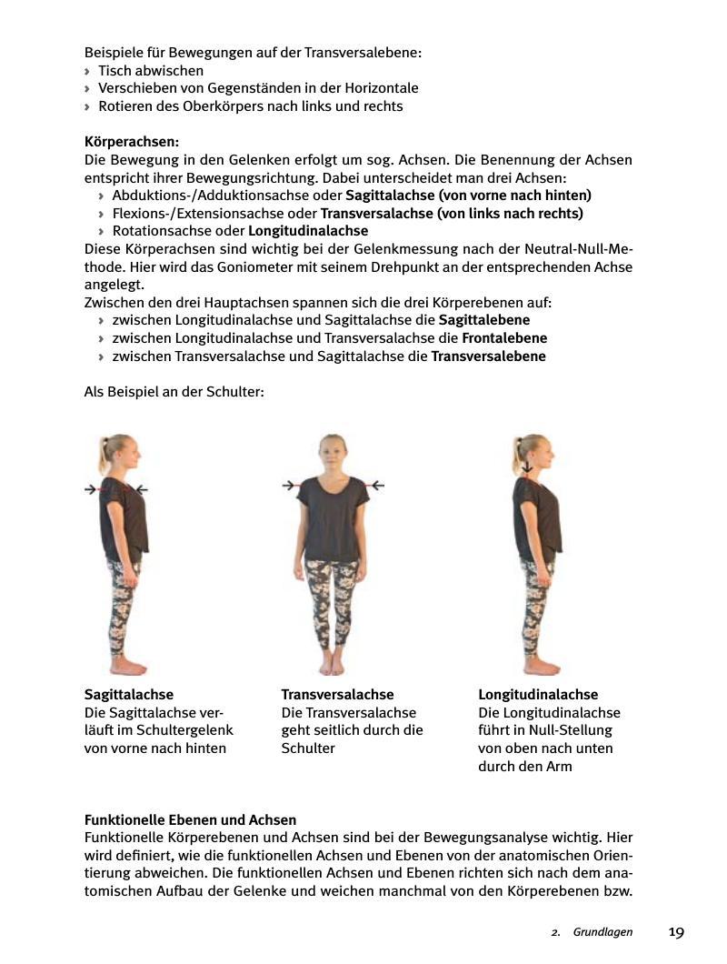 Gemütlich Körperebene Und Anatomische Richtungen Arbeitsblatt Fotos ...